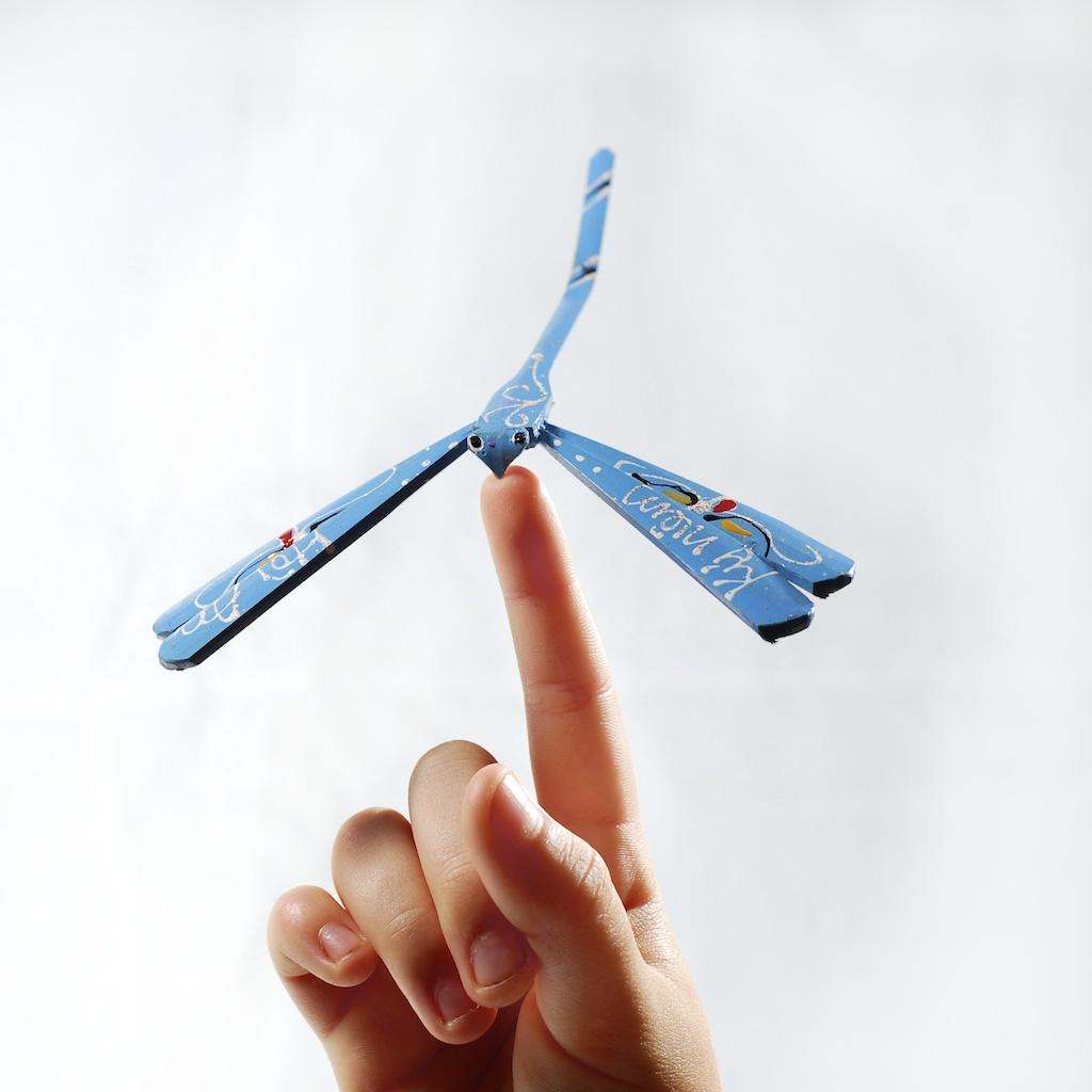 Dragonfliesdragonfly blue