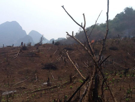 Trekking in Laos.